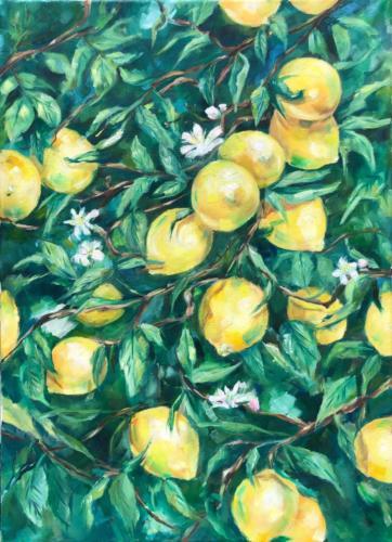 Zitronen, 50 X 70 cm