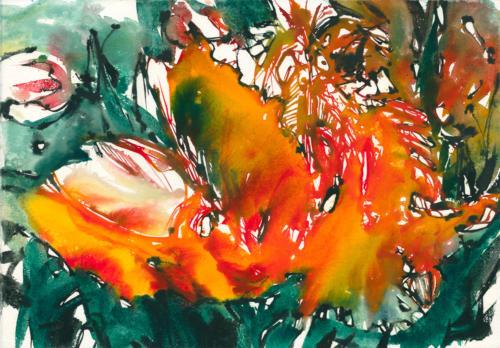 Tulpen II, 71 X 50,5 cm